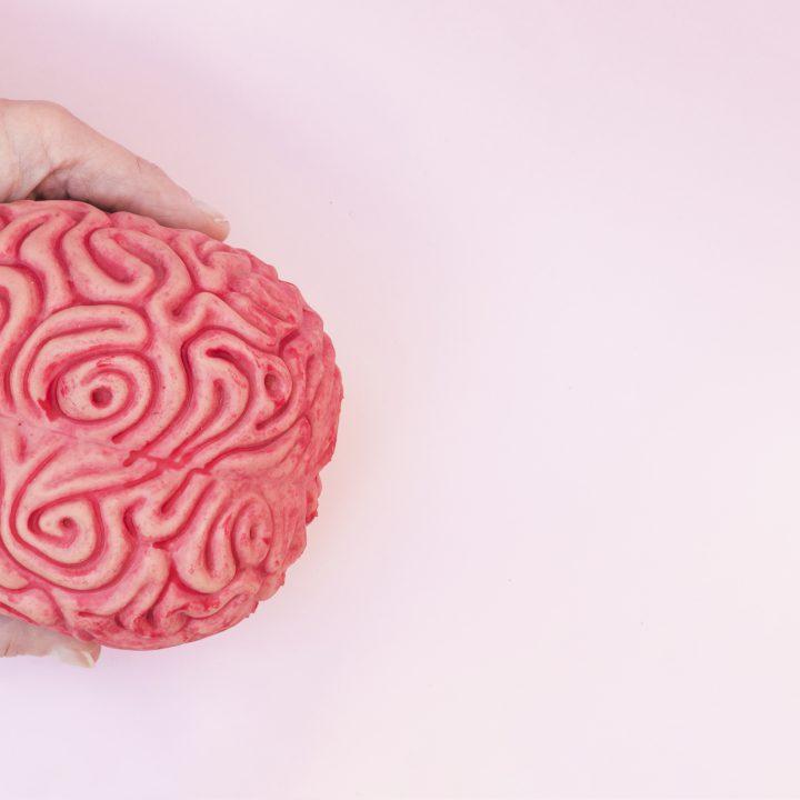 Gemeinsam gegen Glioblastom: Mit Information und Vernetzung zu mehr Verständnis