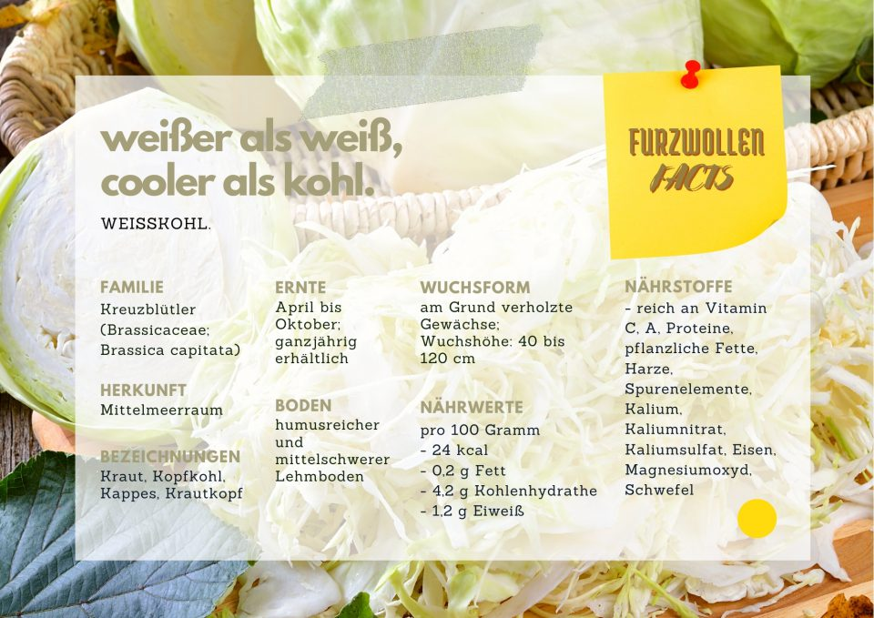 Fitnesskultur Fact Sheet Weisskohl