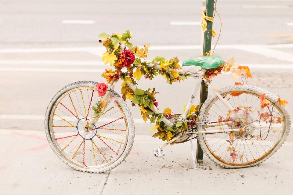 Sterben Vorbereiten Fahrrad Weiss Geschmueckt Blaetter Farbig Blumen Bunt Dekoriert Kaputt Alt Schoen Matthew T Rader KeinUoPC QM Unsplash