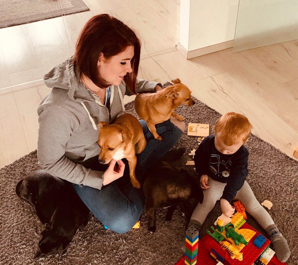 Constanze Frick Frau Kind Mutter Spielzeug Bausteine Teppich Boden Sitzen Spielen Hunde Sitzen Familie Constanze Frick IMG_