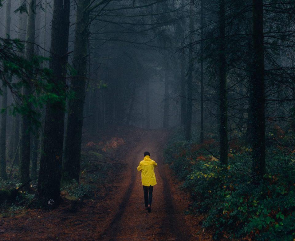 Kopftimismus Dunkler Wald Mann Gelber Regenmantel Pexels Louis