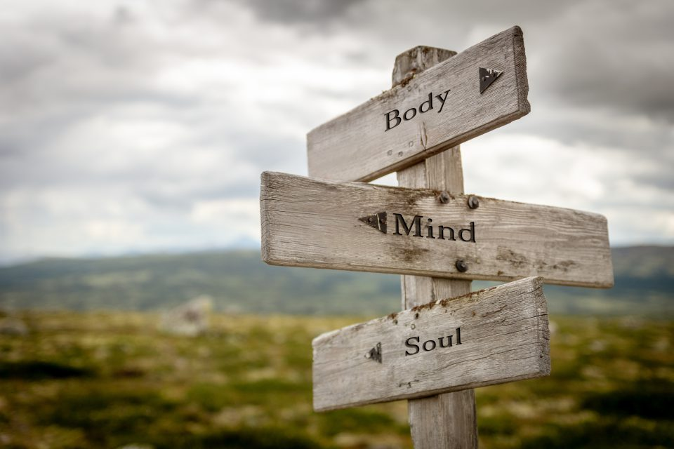 Body Mind Soul Text Engraved On Old Wooden Signpost Outdoors In Nature Quotes, Words And Illustration Concept
