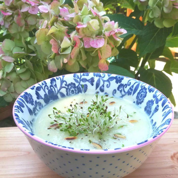 Clean Food, Sprossen & Mikrogrün